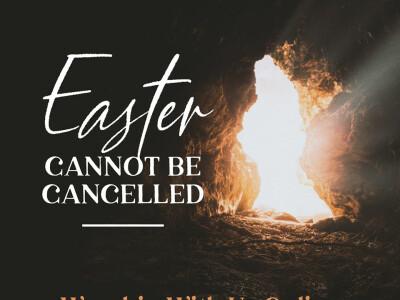 Jesus Brings Restoration